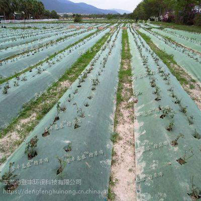 登丰惠农防草布 厂家直销 规格齐全 透气透水环保可降解