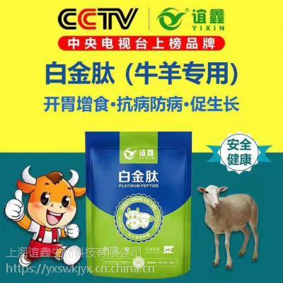 如何育肥牛长得快 牛吃什么长得快 牛羊专用白金肽