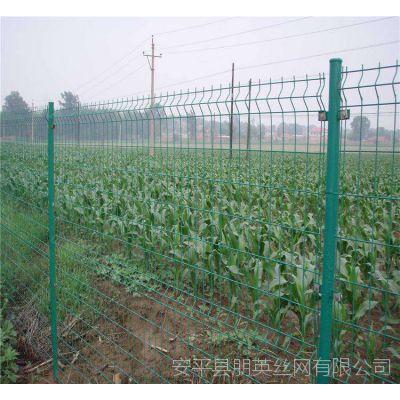 河北厂家供应 双边丝防护网 低碳钢丝圈地果园围栏网
