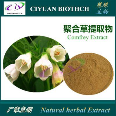 聚合草提取物10:1 紫草根提取物 Comfrey Extract 慈缘生物