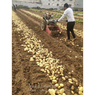 花生芋头地瓜出土机 家用小型薯类收获机