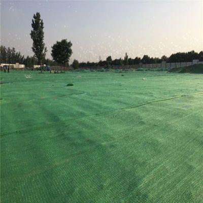 三针防尘网 盖煤绿网 盖土防尘网