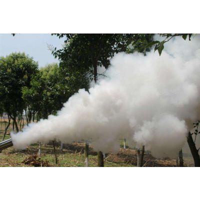 棉花除虫打药机 农作物烟雾机 专业弥雾机图片