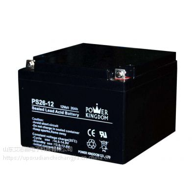 POER KINGDOM蓄电池PS65-12代理商报价
