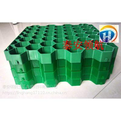 深圳加强植草格-7公分植草格厂家大量库存