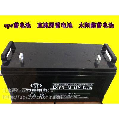力信铅酸蓄电池UPS电源专用12V65AH免维护型电池