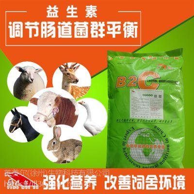 牛羊肠道健康专用料-羊益生素生产厂家