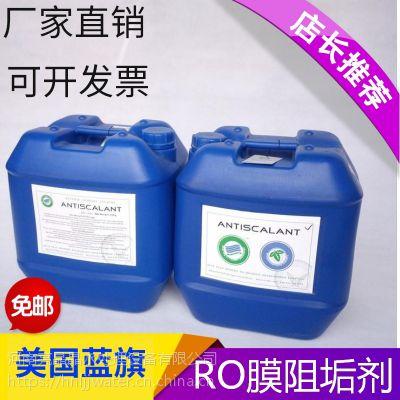 反渗透阻垢剂反渗透膜阻垢剂纯净水RO膜 蓝旗BF-106
