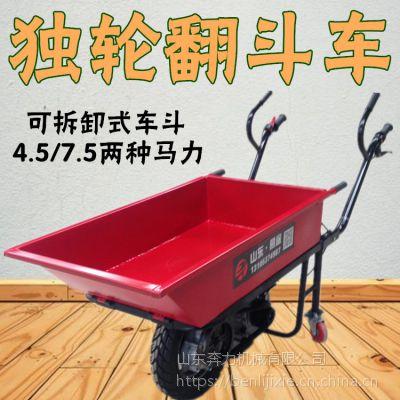 江门供应园林运输平板车 山坡农田收获搬运车 奔力 DL-BL-1
