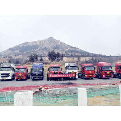 青岛到滨州省内全境集装箱专线车队