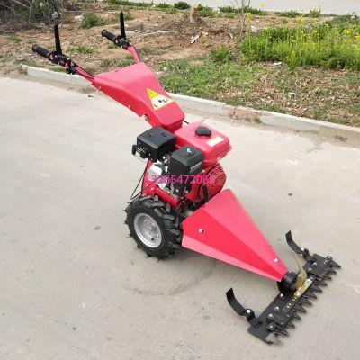 家用小型充电式电动剪草机 便携式多功能绿篱修剪机