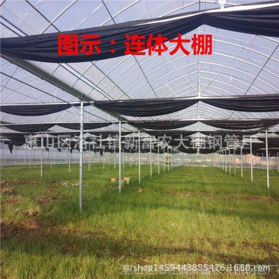 订做热浸锌钢架组装简易连体大棚葡萄水果种植棚避雨钢管大棚图片