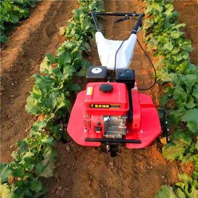 新型微耕旋耕机 高效率汽油松土机手扶小型犁地机