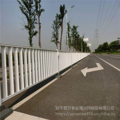 白色塑钢护栏 优质防护网 市政护栏网价格