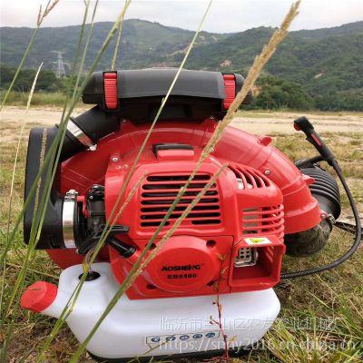 大棚背负式吹雪机 手提便携式吹雪机 马路吹风机清扫机