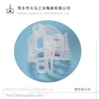 萍乡天马 塔内件 塑料海耳环填料