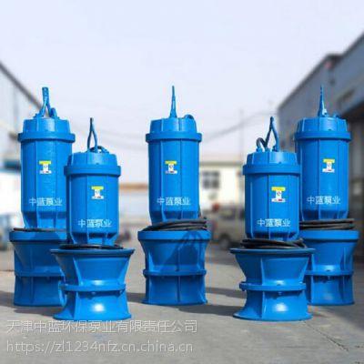天津厂家大流量轴流泵