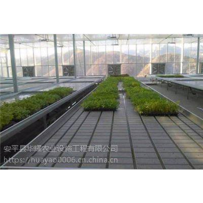 温室大棚使用潮汐苗床ABS潮汐水盘面板的好处