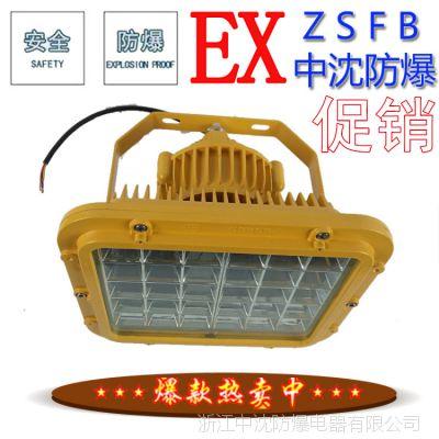 BAD防爆免维护LED照明灯功率40W50W60W防爆LED灯带臂式安装支架
