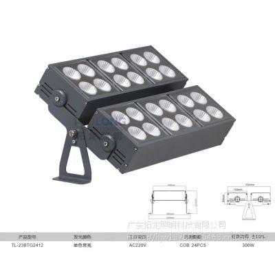 拓龙照明批发 节能防水照明 led投光灯外墙 户外聚光灯 大功率COB300w投光灯6000K