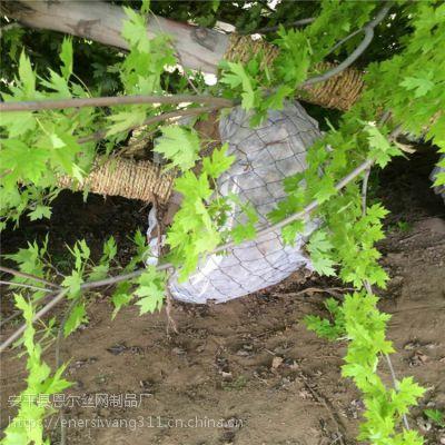 林业局定做树根移植网,包土球铁丝网,包树网