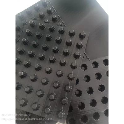 排水板 聚乙烯高密度排水板 H10-60mm 质量好价格优