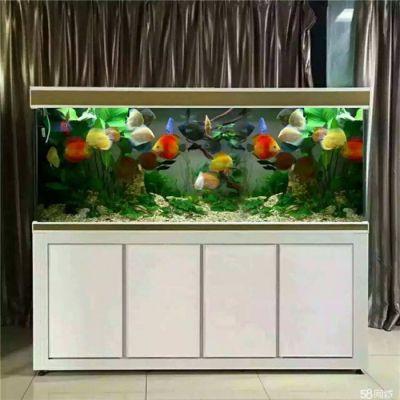 杭州观赏鱼缸定制-可丽水族-杭州观赏鱼缸