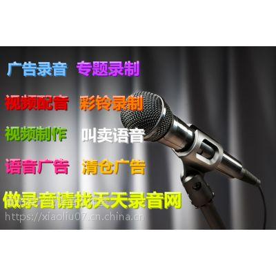 新年啄木鸟皮具广告录音配音制作