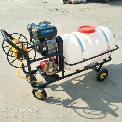 华晨 汽油手推车式打药机300L高压喷雾机消毒防疫喷雾器