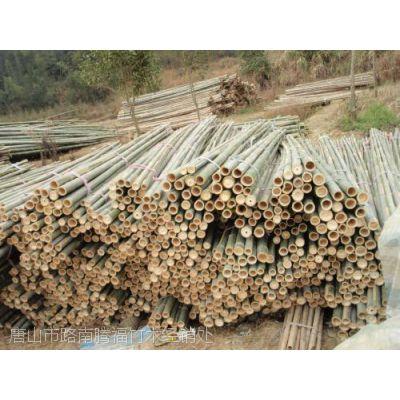 河北唐山常年供应2米、2.5米、3米、4米竹竿、树木支撑杆-腾福竹木