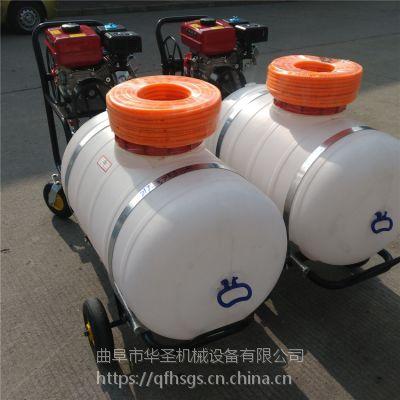 厂家热销的大容量打药机 汽油四冲程省油喷药机
