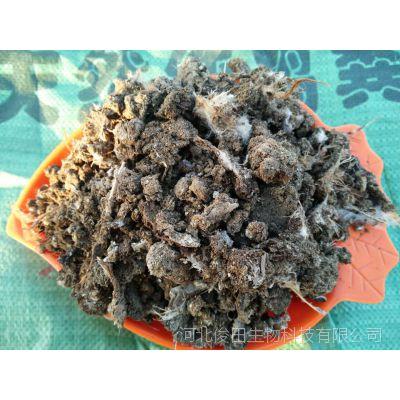 山西临汾纯鸡粪有机肥 临汾晾晒干鸡粪块发酵鸡粪有机肥批发