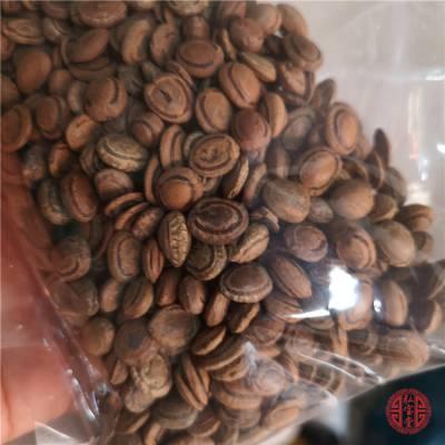 猴枣【别名】猴子枣、羊肠枣、猴丹、申枣哪里能买到正品