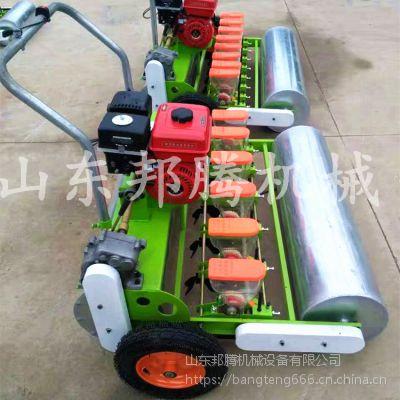 多功能小型精密蔬菜播种机_手推电动汽油自走式播种机
