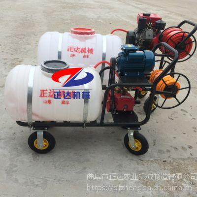 德阳柴油高压喷雾器 手拉风送式喷药机