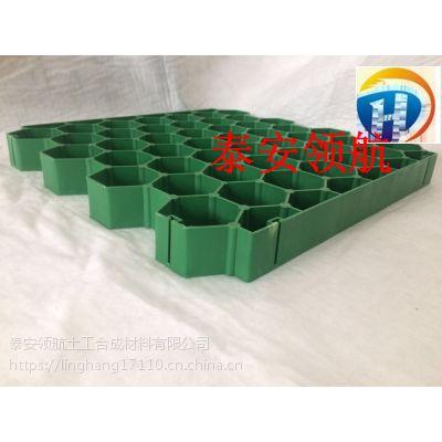 广州高尔夫球场植草格-6公分植草格厂家施工规范