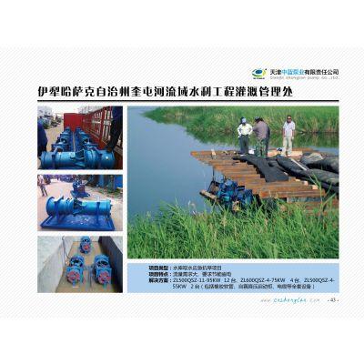 900QZB-100T-15000方潜水轴流泵-耐腐蚀-不锈钢