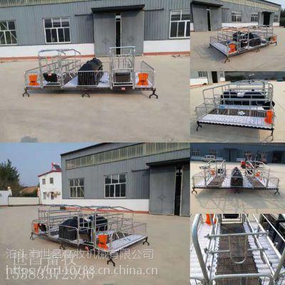 沧州母猪产床批发厂家常年批发双体母猪产床复合母猪产床高培母猪床