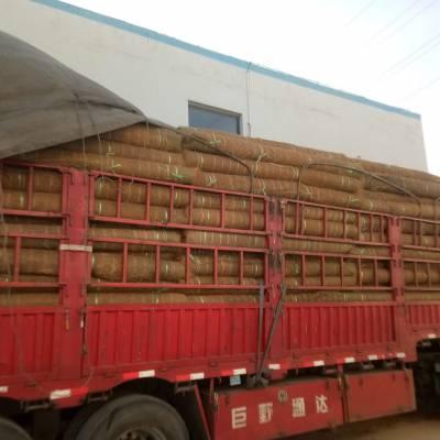 植草毯边坡绿化 赣州椰丝毯 江西生态植被毯 植物纤维毯河道绿化治理