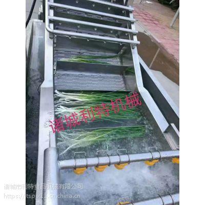 香菜清洗机 叶菜类喷淋清洗机 香菜加工设备厂家