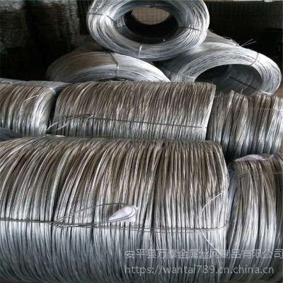 抗老化铁丝网 带刺防护网 优质镀锌丝刺绳