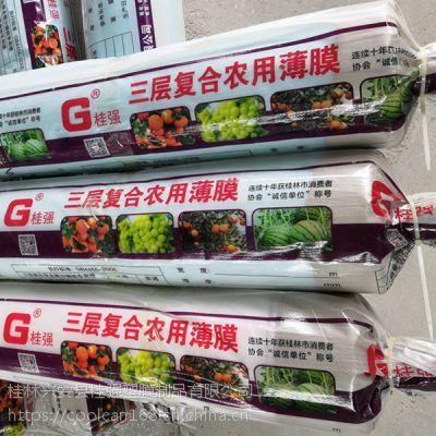 西瓜专用膜-桂林兴安县桂强塑膜制品有限公司-专业的广西农膜生产厂家