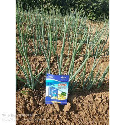 葱姜蒜防治地下害虫药肥,管到底厂家价格