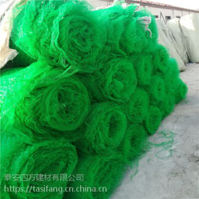三维植被网 厂家大量现货直售 边坡防护材料