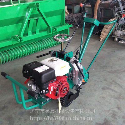 手推式割草皮机 新型草坪机 起草皮机 梳草机厂家直销