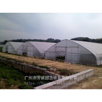河源温室大棚搭建 连栋薄膜大棚 蔬菜大棚价格