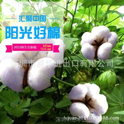 【[鲜花花艺制品原材供应 包邮】] 进口棉花花头 永生花 保鲜花