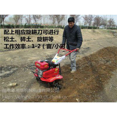 花卉管理汽油除草机 农田灭茬松土机 油耗低的旋耕机