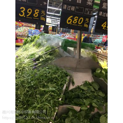 自贡市蔬菜保鲜加湿器蔬果保鲜加湿器青菜保鲜加湿器优质生产厂家嘉兴鸿旭