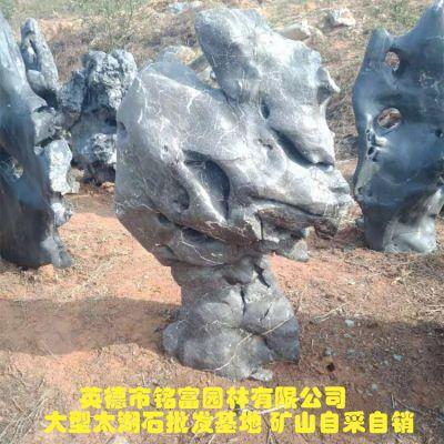 天然太湖石奇石 一个形态优美的太湖石值得拥有